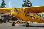 Piper J3 Cub taxiing at 2014 Hood River Fly-In at WAAAM.