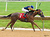 First Dance winning at Delaware Park on 6/15/16