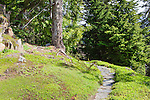 Flagstone trail through forest, Vista House, Ohme Gardens, Wenatchee, Chelan County, Washington, USA.