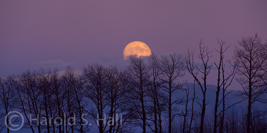 I'll go many miles out of my way to get a good moon rise or moon set photo.  At other times, you just happen to be in the right place at the right time.  I was photographing some aspen trees and then discovered this beautiful scene directly behind me.  I exposed for the moon, letting all else go to silhouette.