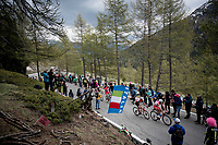 up the Colle San Carlo (Cat1/1921m/10.1km/9.8%)<br /> <br /> Stage 14: Saint Vincent to Courmayeur/Skyway Monte Bianco (131km)<br /> 102nd Giro d'Italia 2019<br /> <br /> ©kramon