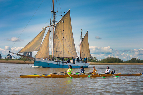 The Shared Shannon Estuary - the Trading Ketch Ilen approaching Limerick upriver as a Women's Four from St Michael's Rowing Club heads downstream in Sunday morning's good weather
