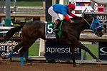 """ARCADIA, CA  SEPTEMBER 28:  <br /> #5 Mongolian Groom, ridden by Abel Cedillo, wins the Awesome Again Stakes (Grade l) """"Win and You're Breeders' Cup Classic Division"""" on September 28, 2019 at Santa Anita Park in Arcadia, CA."""