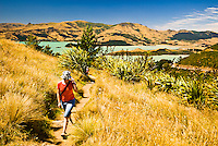 Young woman on a track with Lyttelton Harbour in the background - East Coast, Canterbury, New Zealand