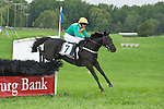 1 October 2011: Black Jack Blues and Ross Geraghty win the Dorothy Fred Smithwick Memorial Stakes at Virginia Fall Races in Middleburg, Va. Black Jack Blues is owned by Irvin Naylor and trained by Joseph Delozier III. Susan M. Carter/Eclipse Sportswire