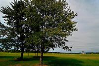Jasenovac / Croazia.Il Campo di concentramento di Jasenovac fu il più grande campo di concentramento costruito nei Balcani durante la seconda guerra mondiale, creato dallo Stato Indipendente di Croazia, retto di fatto da Ante Paveli, alleato delle potenze dell'Asse..Si trova nei pressi dell'omonimo paese sulle rive del fiume Sava, ad un centinaio di chilometri a sud-est di Zagabria, vicino all'attuale confine croato-bosniaco..Nell'area di Jasenovac e nella vicina Stara Gradisca furono uccisi almeno 500.000 serbi, oppositori del regime, ebrei e rom..Durante il recente conflitto degli anni '90, la zona fu contesa tra serbi e croati ed il museo fu gravemente danneggiato. Nella foto, sullo sfondo il grande fiore di cemento eretto dall'architetto Bogdanovic in ricordo delle vittime..Foto Livio Senigalliesi..Jasenovac / Croatia.Jasenovac concentration camp was the largest extermination camp in the Independent State of Croatia (NDH) and occupied Yugoslavia during World War II. The camp was established by the Croatian Ustasha regime in August 1941 and dismantled in April 1945. In Jasenovac, the largest number of victims (at least 500.000) were ethnic Serbs, whom Ante Paveli considered the main racial opponents of Croatia, alongside the Jews and Roma peoples..In the picture, on the bachground, the monument erected by architect Bogdanovic. .Photo Livio Senigalliesi