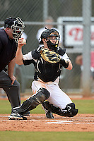 Wisconsin-Milwaukee Panthers catcher Mitch Ghelfi (16) during a game against the Ball State Cardinals on February 21, 2014 at North Charlotte Regional Park in Port Charlotte, Florida.  Ball State defeated Wisconsin-Milwaukee 3-1.  (Mike Janes/Four Seam Images)