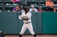 Visalia Rawhide center fielder Luis Silverio (15) at bat during a California League game against the Stockton Ports at Visalia Recreation Ballpark on May 8, 2018 in Visalia, California. Stockton defeated Visalia 6-2. (Zachary Lucy/Four Seam Images)
