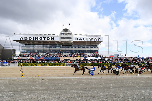10th November 2020; Christchurch, New Zealand;  Self Assured (11) and Driver Mark Purdon win the NZ Trotting Cup at Addington Raceway, Christchurch, New Zealand