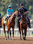 MAR 07: Authentic and Drayden Van Dyke before the San Felipe Stakes at Santa Anita Park in Arcadia, California on March 7, 2020. Evers/Eclipse Sportswire/CSM