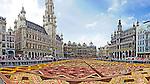 Flower Carpet Festival 2012, Grand Place, Brussels