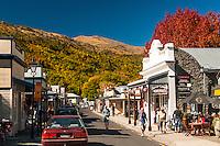 towns & cities   New Zealand