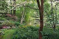 Bench by lake in shaded woodland garden of native plants (Mt. Cuba Center, Delaware)