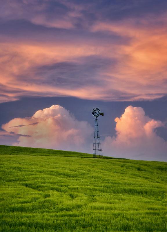 Windmill in wheat field. The Palouse, Washington