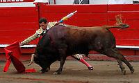 MANIZALES-COLOMBIA. 06-01-2016: Sebastian Vargas, lidiando a Muñeco de 440kg de la ganadería Mondoñedo durante la segunda corrida como parte de la versión número 60 de La Feria de Manizales 2016 que se lleva a cabo entre el 2 y el 10 de enero de 2016 en la ciudad de Manizales, Colombia. / The bullfighter Sebastian Vargas, struggling to Muñeco de 440kg during the second bullfight as part of the 60th version of Manizales Fair 2016 takes place between 2 and 10 January 2016 in the city of Manizales, Colombia. Photo: VizzorImage / Santiago Osorio / Cont
