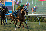 DEL MAR, CA  SEPTEMBER 1: #9 Vasilika, ridden by Flavien Prat, in the stretch of the John C. Mabee Stakes (Grade ll), on September 1, 2018 at Del Mar Thoroughbred Club in Del Mar, CA.(Photo by Casey Phillips/Eclipse Sportswire/Getty ImagesGetty Images