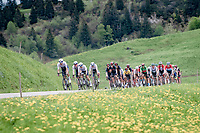 Team Israel Start-Up Nation leading teh peloton coming down the Col des Aravis (2Cat/1498m/6.7km@7%)<br /> <br /> 73rd Critérium du Dauphiné 2021 (2.UWT)<br /> Stage 8 (Final) from La Léchère-Les-Bains to Les Gets (147km)<br /> <br /> ©kramon