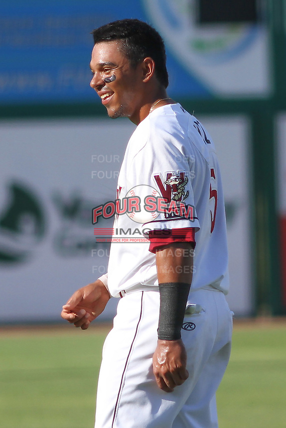 Wisconsin Timber Rattlers outfielder Brandon Diaz (5) during a Midwest League game against the Quad Cities River Bandits on July 17th, 2015 at Fox Cities Stadium in Appleton, Wisconsin. Quad Cities defeated Wisconsin 4-2. (Brad Krause/Four Seam Images)