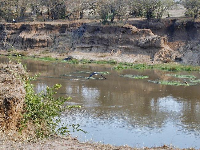 Mara River in Dry Season