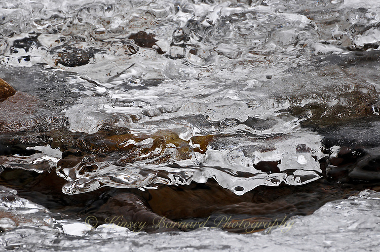 """""""RIVER ICE-3""""<br /> <br /> Ice formations along a river's edge creating intricate and beautiful designs"""