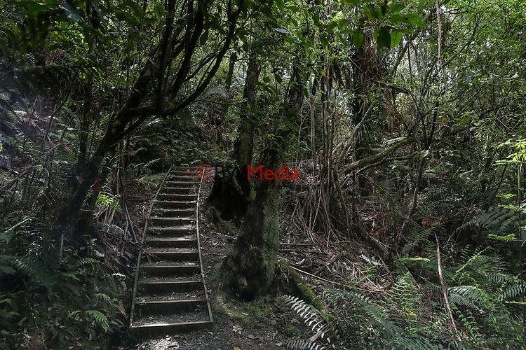 Hunua Regional Park, Hunua Falls and Cossey's Dam, Monday 8 October 2018. Photo: Simon Watts/www.bwmedia.co.nz