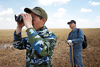 Scientists looking for the Red-Crowned Crane, a threatened species at the Zhalong Wetlands, Heilongjiang Province. China. 2011