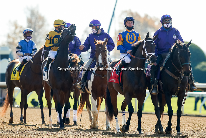 November 7, 2020: Horses get ready for the Qatar Fort Springs Stakes on Breeders' Cup Championship Saturday at Keeneland Race Course in Lexington, Kentucky on November 7, 2020. Carolyn Simancik/Breeders' Cup/Eclipse Sportswire/CSM