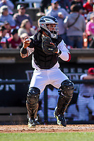 Wisconsin Timber Rattlers catcher Mario Feliciano (4) during a Midwest League game against the Quad Cities River Bandits on April 8, 2017 at Fox Cities Stadium in Appleton, Wisconsin.  Wisconsin defeated Quad Cities 3-2. (Brad Krause/Four Seam Images)