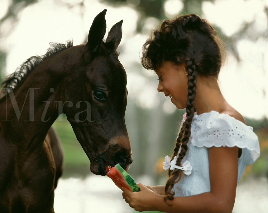 Young gilr feeding watermelon slice to a foal..