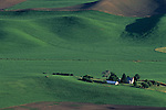 Rolling hills of  green croplands and wheat fileds from Steptoe Butte Eastern Washington State USA