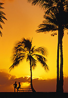 Sunset on the North Shore with people and palm trees in silhouette
