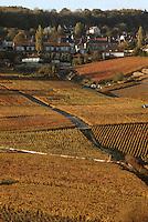 Europe/France/Champagne-Ardenne/51/Marne/Hautvillers: le village et le vignoble Champenois de la Vallée de la Marne