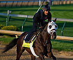 LOUISVILLE, KY - APRIL 28: Noble Indy, trained by Todd Pletcher, exercises in preparation for the Kentucky Derby at Churchill Downs on April 28, 2018 in Louisville, Kentucky. (Photo by Scott Serio/Eclipse Sportswire/Getty Images)