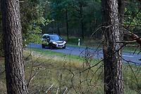 GERMANY, lower saxonia, Forest / DEUTSCHLAND, Niedersachsen, Wald, Straße