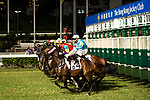 #4 Chad Schofield riding Polymer Luck during the race 4 of Hong Kong Racing at Happy Valley Race Course on November 08, 2017 in Hong Kong, China. Photo by Marcio Rodrigo Machado / Power Sport Images