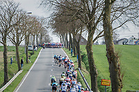 Teh splitted peloton regroups just ahead of the 1st ascent of the Kemmelberg<br /> <br /> 79th Gent-Wevelgem 2017 (1.UWT)<br /> 1day race: Deinze › Wevelgem - BEL (249km)
