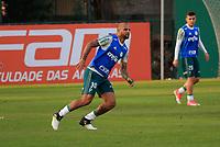 SAO PAULO, SP - 11.07.2017 - TREINO-PALMEIRAS - Jogadores do Palmeiras durante treino na tarde desta terça-feira (11) na Academia de Futebol na Barra Funda, zona oeste da capital.<br /> <br /> (Fabricio Bomjardim / Brazil Photo Press)