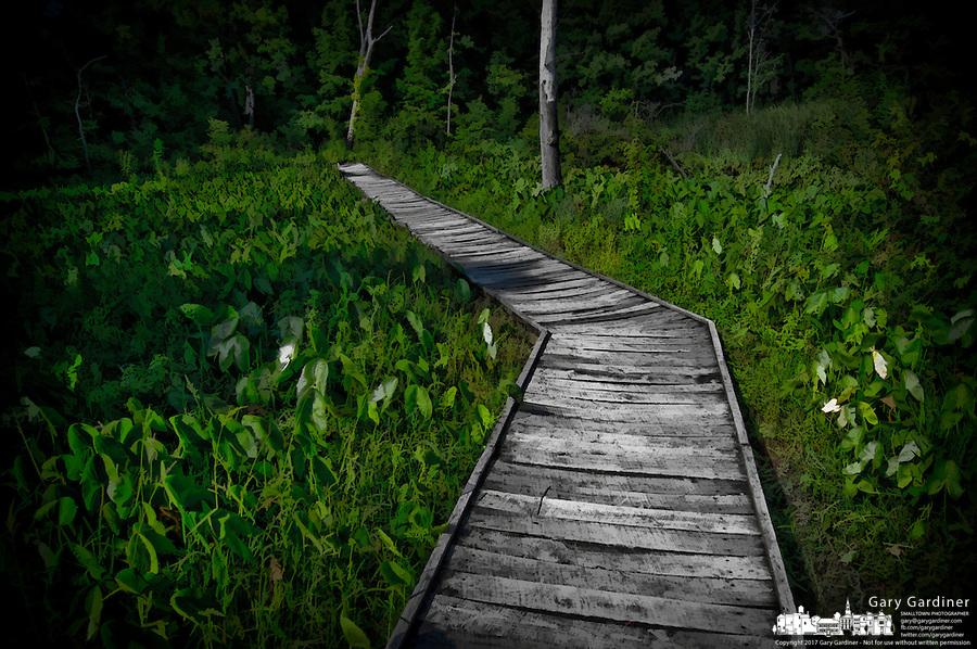 Walkway through wetlands at Boyer Nature Preserve in Westerville, Ohio.