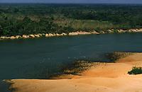 imagem aérea do rio Guaporé - RO com revoada de biguás (Phalacrocorax olivaceus)