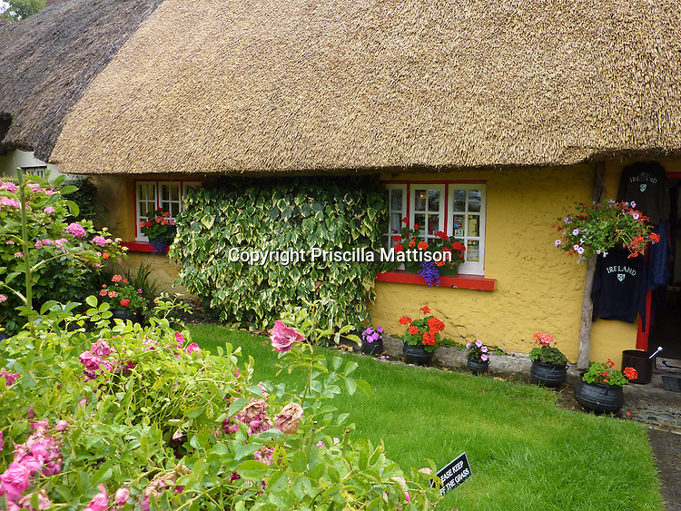 Adare, Republic of Ireland - July 18, 2010:  A thatch-roofed building contains a shop.