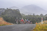 The peleton rides round the Western Access road round Lake Wairarapa during stage four of the NZ Cycle Classic UCI Oceania Tour in Wairarapa, New Zealand on Wednesday, 25 January 2017. Photo: Dave Lintott / lintottphoto.co.nz