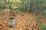 """Remnants of the dwellings along """"Railroad Row"""" at the abandoned village of Livermore during the autumn months. This was a logging village in the late 19th and early 20th centuries along the Sawyer River Logging Railroad in Livermore, New Hampshire USA. The town and railroad was owned by the Saunders family."""