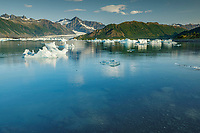 Summer landscape of icebergs at Bear Glacier and Bear Glacier Lagoon in Kenai Fjords National Park.  Kenai Penninsula, Summer, Alaska   <br /> <br /> Photo by Jeff Schultz/  (C) 2019  ALL RIGHTS RESERVED