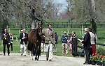 April 22, 2015:  William Fox-Pitt and #82 Bay My Hero at the Rolex Three Day Event first horse inspection.  Candice Chavez/ESW/CSM