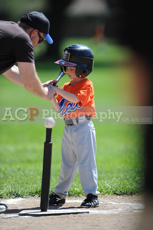 The T-Ball Mets of Pleasanton National Little League  March 28, 2009.