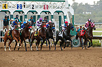 DEL MAR, CA  AUGUST 29: The start of the Shared Belief Stakes on August 29, 2021 at Del Mar Thoroughbred Club in Del Mar, CA. (Photo by Casey Phillips/Eclipse Sportswire/CSM)