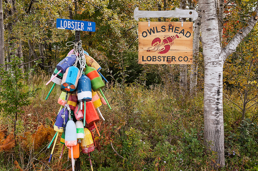 Lobster buoys, Owls Head, Maine, USA.