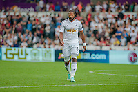 Saturday 20th September 2014  Pictured:  Ashley Williams <br /> Re: Barclays Premier League Swansea City v Southampton  at the Liberty Stadium, Swansea, Wales,UK