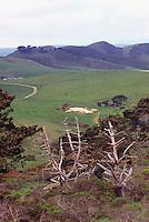 Farmland in Point Reyes National Seashore, California, USA