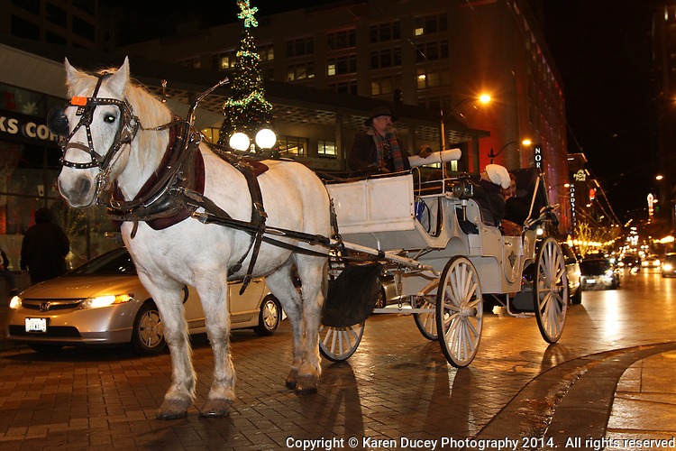 """A horse and carriage ride from Sealth Horse Carriage operated by (photo © Karen Ducey Photography) """"It was excellent!"""" said Bill Strand and Sherry Evans Bonney lake, WA<br /> <br /> Kim Jarvis from Kirkland said about a previous ride """"it was so beautiful.""""  Its like you're wrapped in holiday spirit. The blanket snuggled in with loved oneslooking at all the lights.  Its just like you're living a real life Christmas carol.<br /> <br /> Horse is clomping down the big city street.   It's a holiday setting.<br /> <br /> This is the center of our holiday city day.  They also went on the ferris wheel, had dinner at the Space Needle, and went ice skating."""